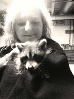 Holding a raccoon
