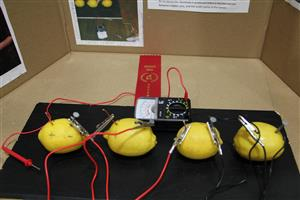 ... Lemon Battery Experiment by - Jessie LeMaster ~ Mr. Brood's 4th Grade