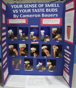 ... Smell vs. Your TasteBuds - by Cameron Bauers ~ Mr. Pianosi's 5th Grade